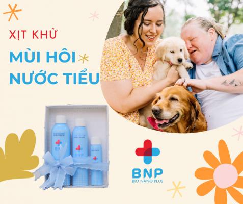 khử mùi nước tiểu là cách trị tiểu bậy ở chó